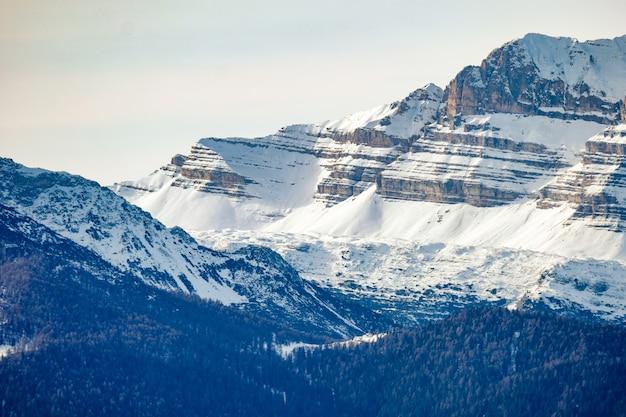 晴れた日に雪に覆われた山の近くの森林に覆われた丘の美しいショット
