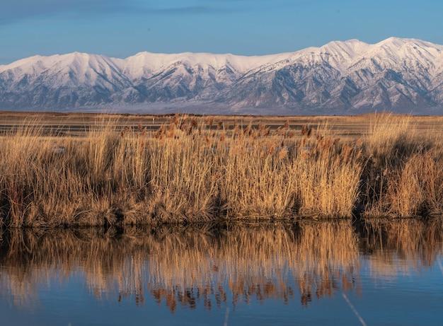 Красивый снимок большого соленого озера в штате юта