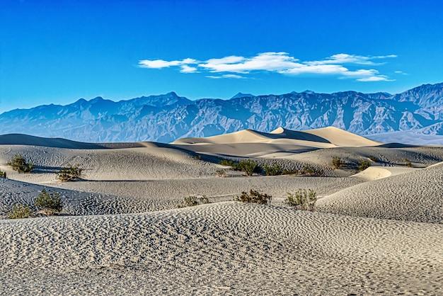 Красивый снимок плоских песчаных дюн мескитового дерева в национальном парке долина смерти в калифорнии, сша