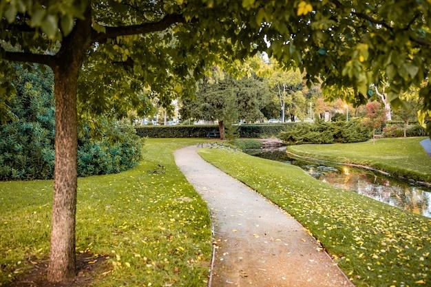 놀라운 자연으로 둘러싸인 공원 통로의 아름다운 샷