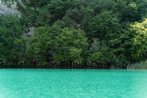 Красивый снимок плитвицких озер, хорватия
