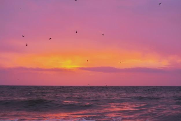 일몰 동안 수평선에 놀라운 빛나는 태양과 바다의 아름다운 샷