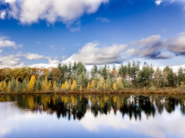 Красивый выстрел из воды, отражающие деревья на берегу под голубым облачным небом