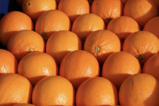 Beautiful shot of oranges arranged together shining under the sun