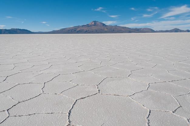 Bello scatto della distesa di sale sotto un cielo azzurro brillante nell'isola di incahuasi, bolivia