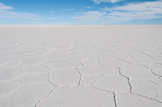 Beautiful shot of the salt flat under a bright blue sky in isla incahuasi, bolivia
