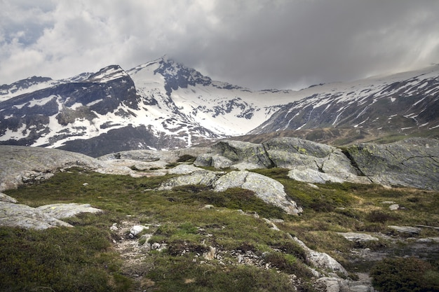 Bellissimo scatto di san bernardino, svizzera