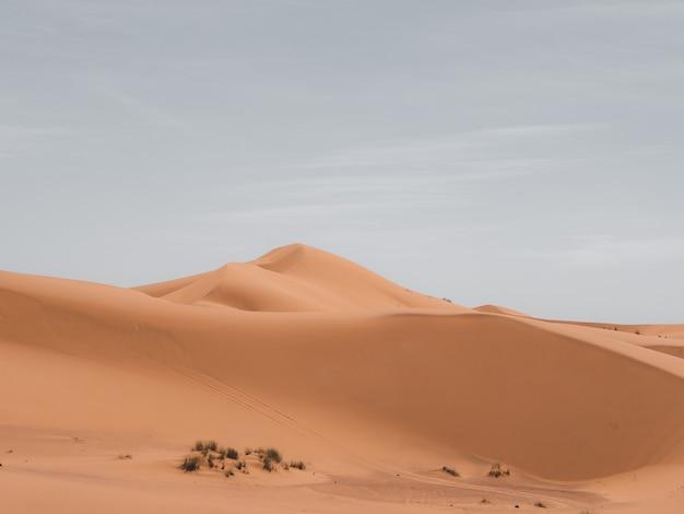 Bello colpo delle dune di sabbia con un cielo nuvoloso nei precedenti