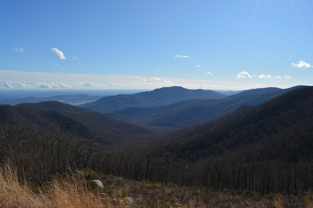 Beautiful shot of the shenandoah national park in the usa under a blue sky