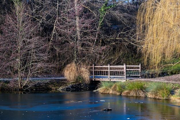 Bella ripresa di un piccolo ponte su un lago nel parco maksimir a zagabria in croazia durante il giorno