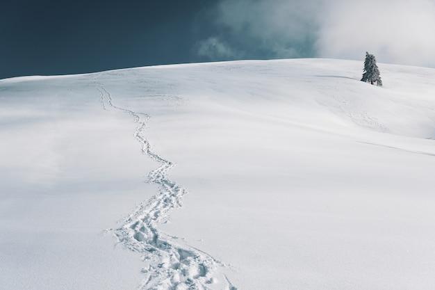 Bella ripresa di un paesaggio innevato con tracce di piedi nella neve sotto il cielo blu