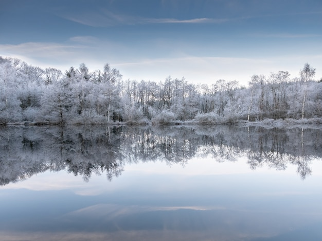 Beautiful shot of the water reflecting the snowy trees under a blue sky