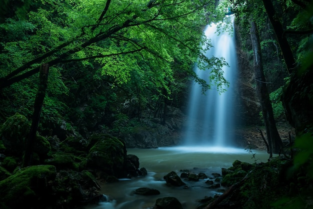 Beautiful shot of a waterfall in the forest