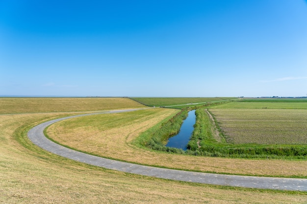 Beautiful shot of a winding road leading through a field in the netherlands under a clear blue sky