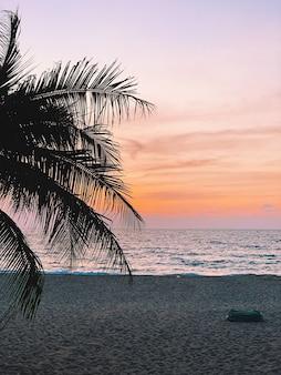 화려한 일몰과 함께 빈 해변에서 열대 코코넛 야자 나무의 아름다운 실루엣 프리미엄 사진