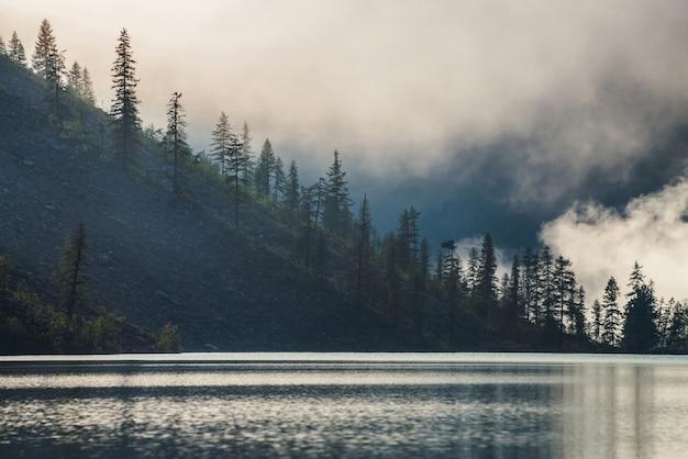 짙은 안개 속에서 산 호수를 따라 언덕에 뾰족한 나무 꼭대기의 아름다운 실루엣