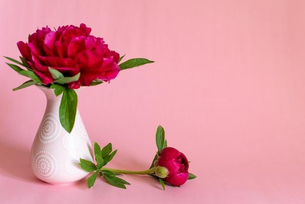 Beautiful single peony flower in vase on pink