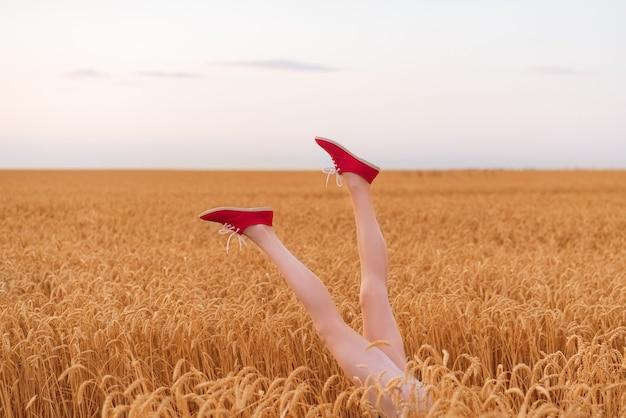 잘 익은 밀의 분야에서 튀어 나와 아름 다운 날씬한 여성 다리. 글루텐 무료 개념.