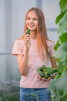 A beautiful slender girl collects cucumbers in the summer in a greenhouse. eats cucumber. harvesting in the vegetable garden in summer