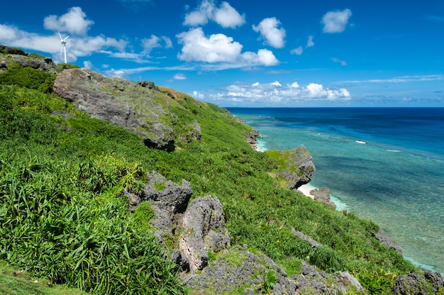 Beautiful slope with beautiful blue sea coastal vegetation and wind turbines on the cliff Premium Photo