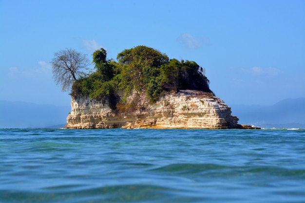 Beautiful small island covered with trees in the middle of the ocean under the clear blue sky