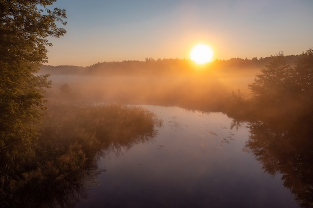 Beautiful small river covered with fog in the morning