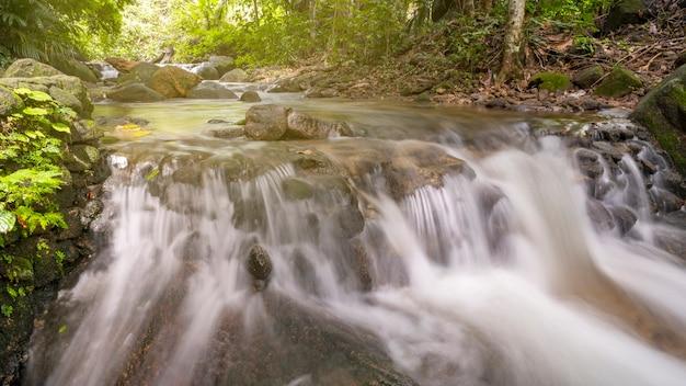 Красивый небольшой водопад в глубоком диком тропическом лесу с движением воды.