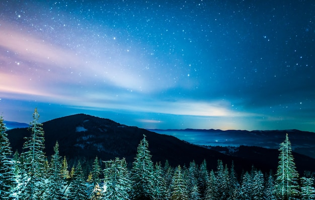 Beautiful snow-covered landscape, bright slender green tall spruce trees grow on a hill against a mountain and a dark shining starry sky.