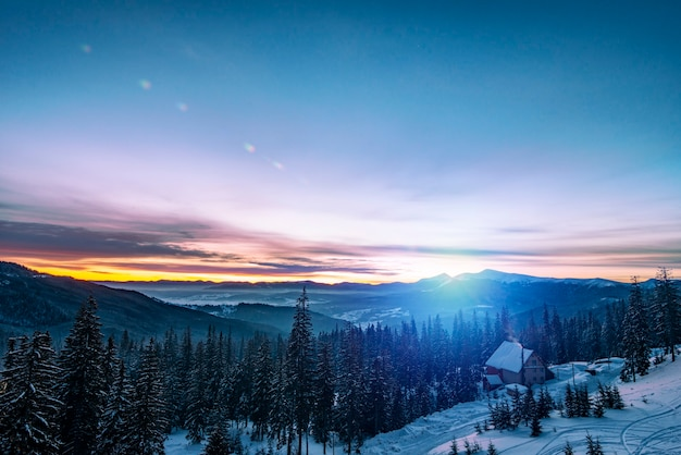 雪に覆われた美しい風景、明るく細い緑の背の高いトウヒの木が、山と暗く輝く星空を背景にした丘の上に生えています。