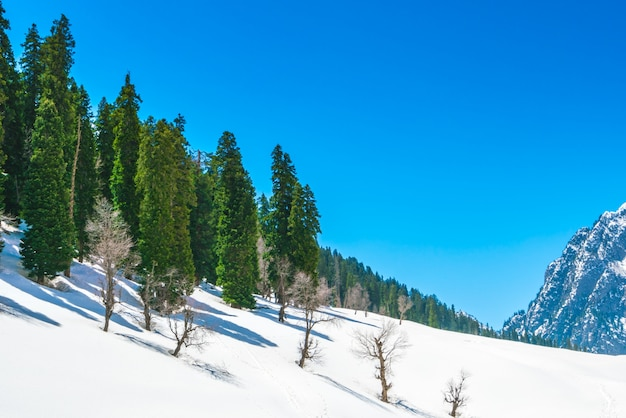Beautiful  snow covered mountains landscape kashmir state, india .