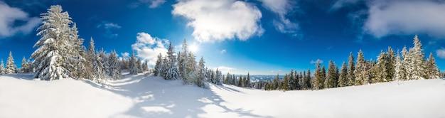 맑은 겨울 날 푸른 하늘을 배경으로 눈으로 덮여 전나무 나무와 아름다운 눈 덮인 슬로프.