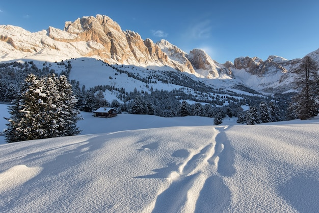 Bellissimo paesaggio innevato con le montagne sullo sfondo
