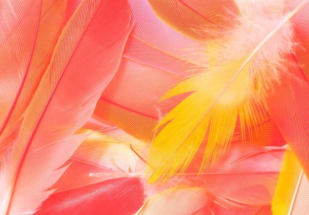 美しい柔らかいピンクオレンジ色のトレンドフェザーパターンテクスチャ背景