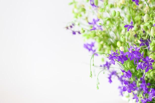 Красивый сплошной фон с цветочной композицией из полевых цветов и свежей травы крупным планом