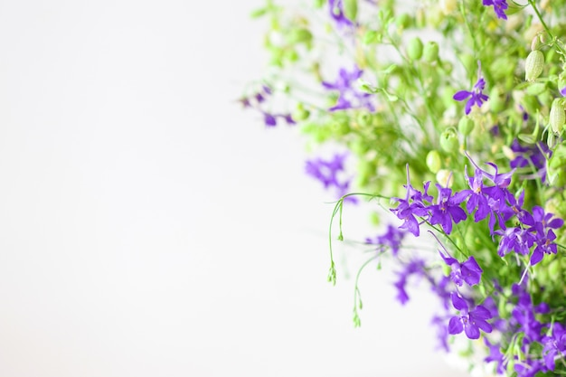 Beautiful solid background with a flower arrangement of wildflowers and fresh grass closeup