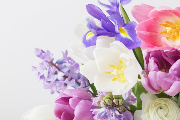 Beautiful sprinf flowers on white background