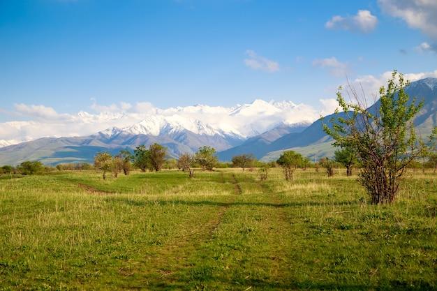 Красивый весенний и летний пейзаж. пышные зеленые холмы, высокие заснеженные горы. проселочная дорога. голубое небо и белые облака. фон для туризма и путешествий.