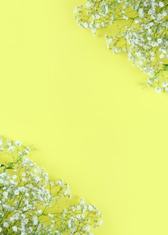 Beautiful spring flowers frame background