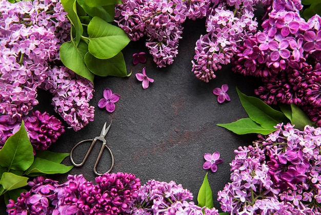 Beautiful spring flowers lilac on dark stone background with place for text