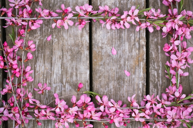 Beautiful spring flowers on old wooden
