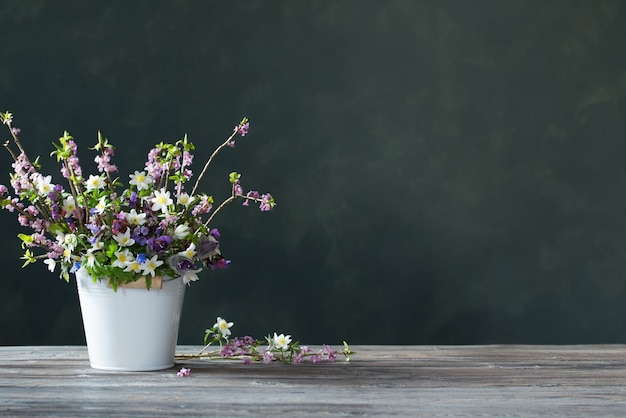 背景の暗い壁に美しい春の花