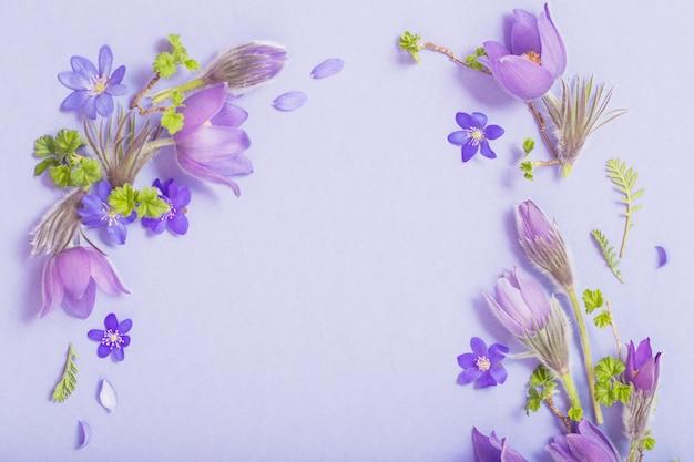 Красивые весенние цветы на синем фоне