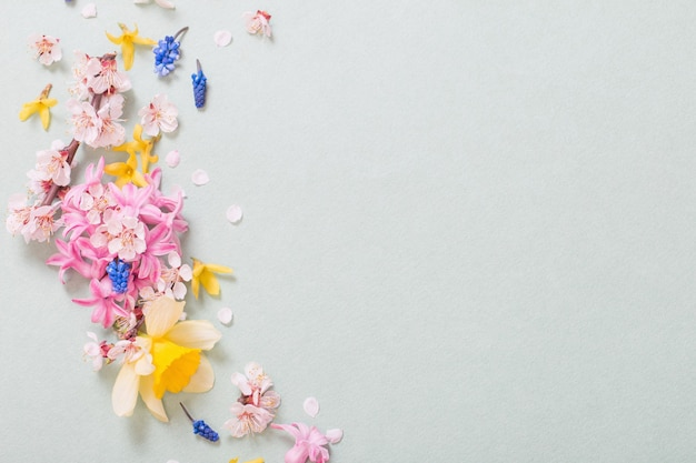 Beautiful spring flowers on paper surface