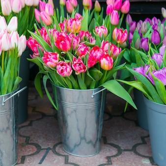 街の通りのバケツに美しい春の花のチューリップ