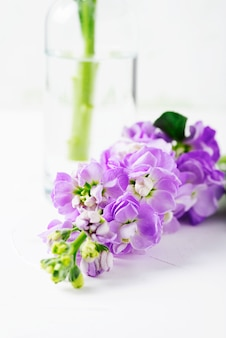Beautiful spring flowers on the white table, selective focus