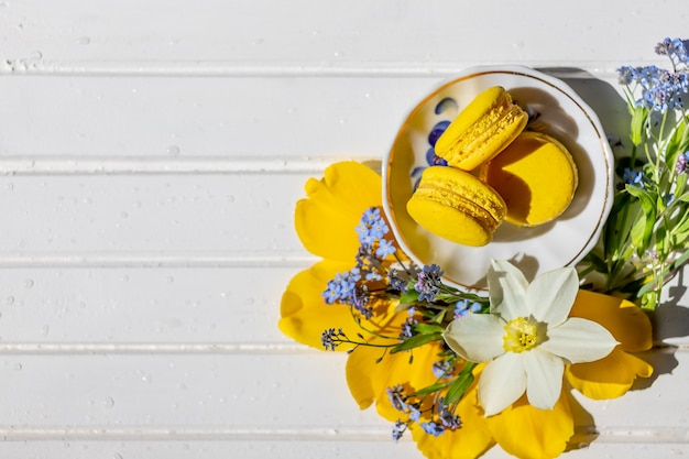 Beautiful still life with macaron biscuits and flowers.lemon dessert isolated