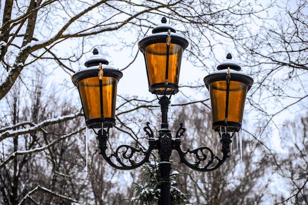 겨울에 공원에서 아름 다운 가로등입니다. 고품질 사진