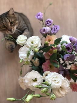 Beautiful striped cat playing with flowers glass vase of flowers on the floor or on the table