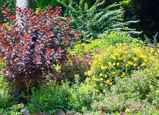 Beautiful summer city park with subtropical plants