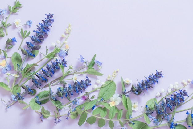 Beautiful summer flowers on blue background